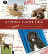 Almost First Dog: The Secret Rejected Portuguese Water Dog Applications