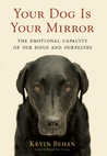 Your Dog Is Your Mirror: The Emotional Capacity of Our Dogs and Ourselves