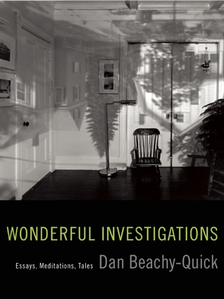 Wonderful Investigations by Dan Beachy-Quick