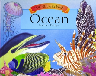 Sounds of the Wild: Ocean