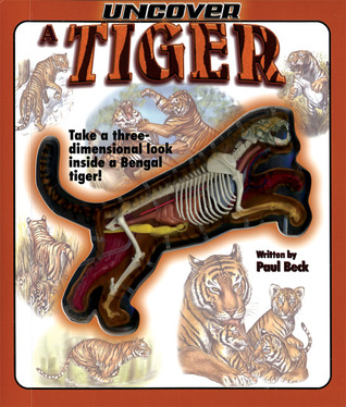 Uncover a Tiger by Paul Beck