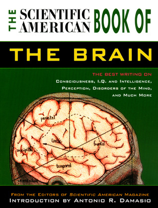 Book of the Brain by Scientific American