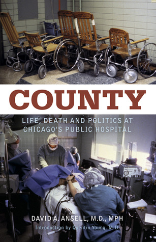 County by David A. Ansell