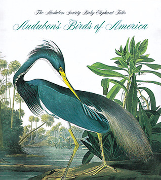 Download for free Audubon's Birds Of America CHM