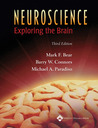 Neuroscience by Mark F. Bear
