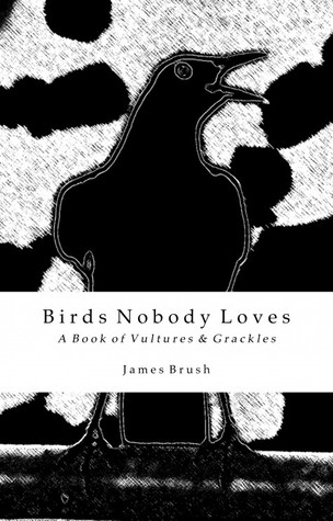Birds Nobody Loves by James Brush