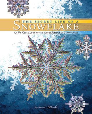 The Secret Life of a Snowflake by Kenneth Libbrecht