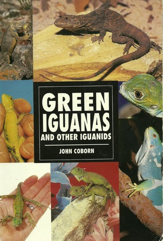 Green Iguanas and Other Iguanids