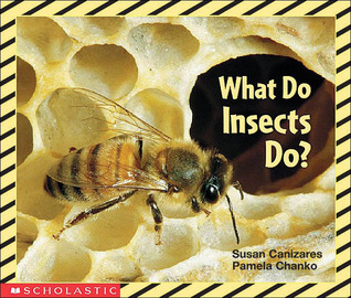 What Do Insects Do? by Susan Canizares