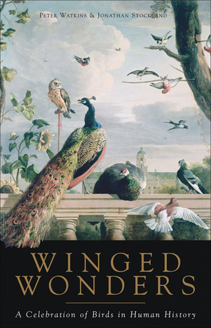 Winged Wonders by Peter Watkins