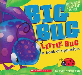Big Bug, Little Bug by Paul Stickland