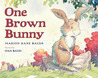 One Brown Bunny
