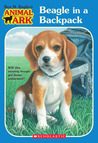 Beagle in a Backpack by Ben M. Baglio