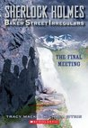 The Final Meeting (Sherlock Holmes and the Baker Street Irregulars #4)