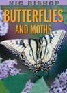 Butterflies And Moths by Nic Bishop