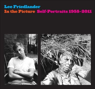 In the Picture by Lee Friedlander