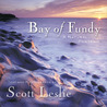 Bay of Fundy: A Natural Portrait