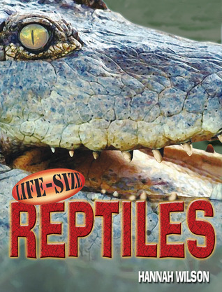Life-Size Reptiles by Hannah Wilson
