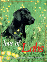 Love of Labs: The Ultimate Tribute to Labrador Retrievers