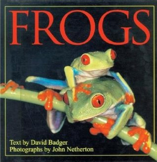 Frogs by David Badger