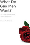 What Do Gay Men Want?: An Essay on Sex, Risk, and Subjectivity