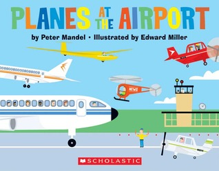 Planes At The Airport by Peter Mandel