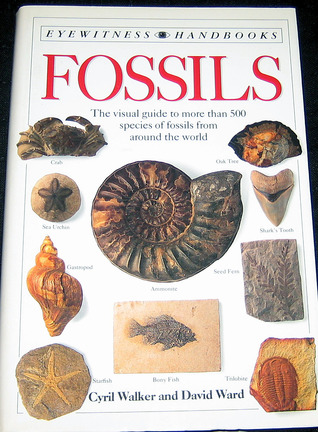 Fossils by Cyril Alexander Walker