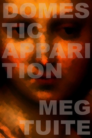 Domestic Apparition by Meg Tuite