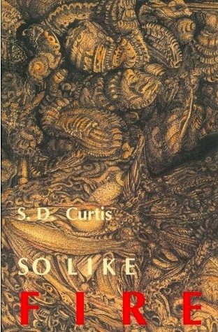 So Like Fire by S.D. Curtis