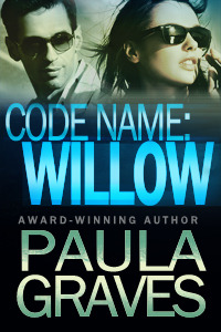 Code Name by Paula Graves