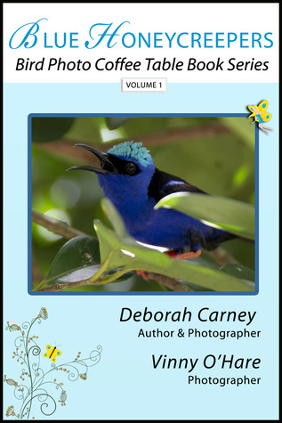 Blue Honeycreepers by Deborah  Carney