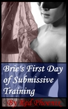 Brie's First Day of Submissive Training by Red Phoenix