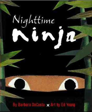 Nighttime Ninja