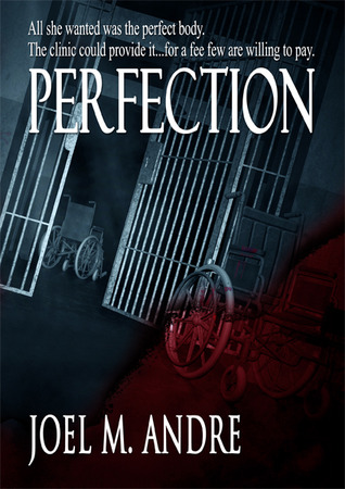 Perfection by Joel M. Andre