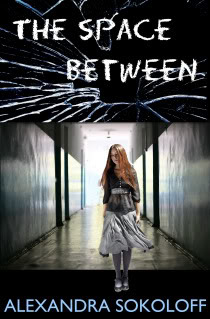 The Space Between by Alexandra Sokoloff