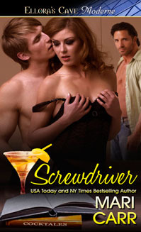Screwdriver by Mari Carr