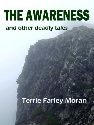 The Awareness by Terrie Moran