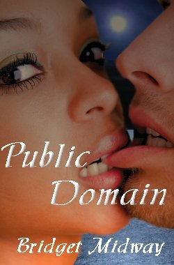Public Domain by Bridget Midway