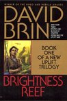 Brightness Reef by David Brin