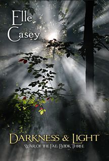 Darkness & Light by Elle Casey