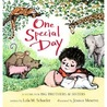 One Special Day by Lola Schaefer