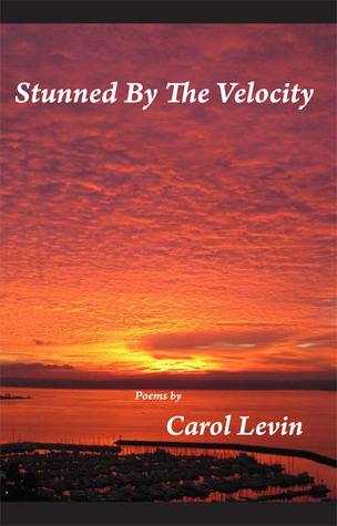 Stunned By the Velocity by Carol Levin