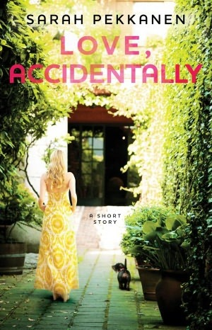 Love, Accidentally by Sarah Pekkanen