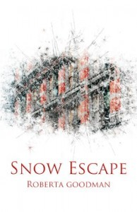 Snow Escape