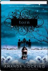 Torn (Trylle Trilogy, #2)