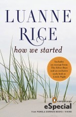 How We Started by Luanne Rice