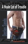 A Hoale Lot of Trouble (Hoale Construction Mystery #1)
