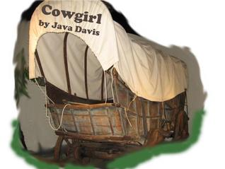 Cowgirl by Java Davis