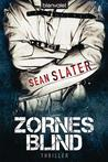 Zornesblind (Jacob Striker, #2)