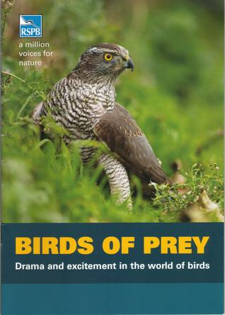 Birds of Prey: Drama and Excitement in the World of Birds
